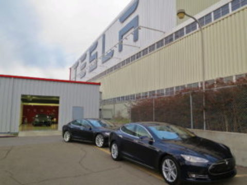 Tesla given green light to cut trees for its Gigafactory in Germany